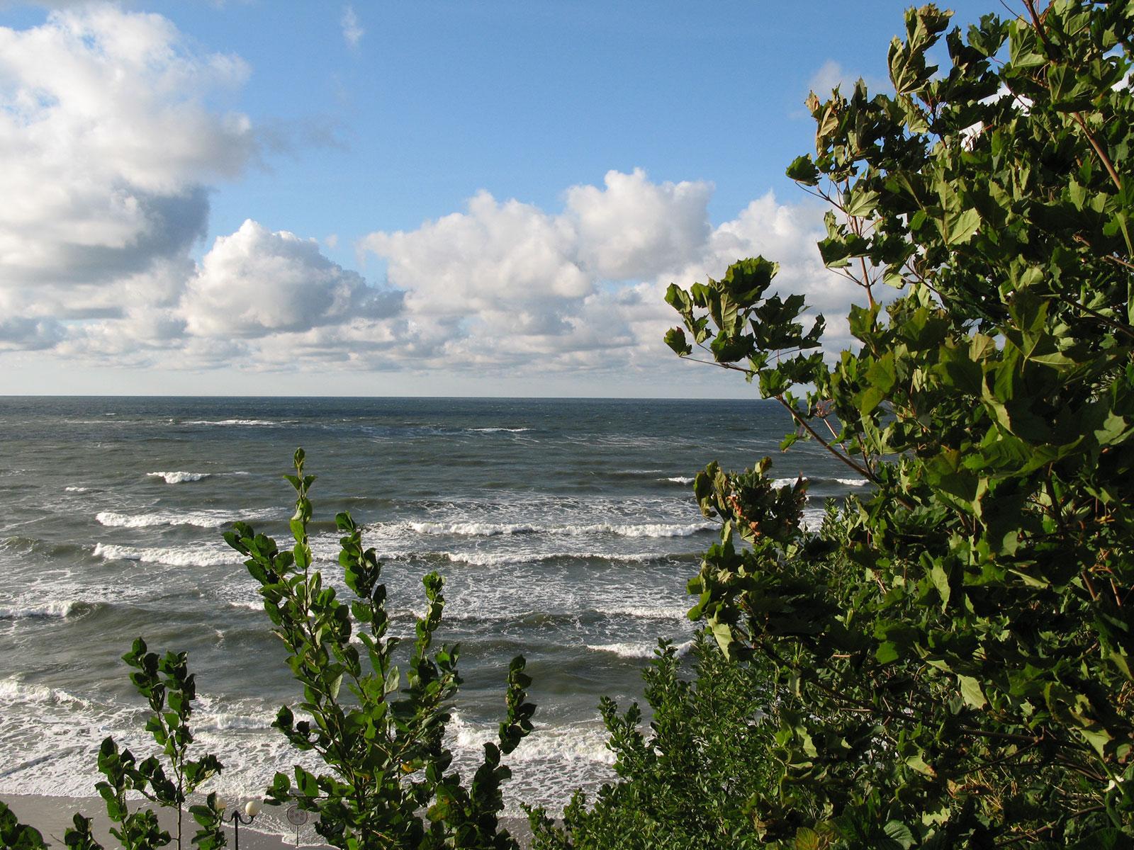 baltiyskoe-more-pionersk-zelen