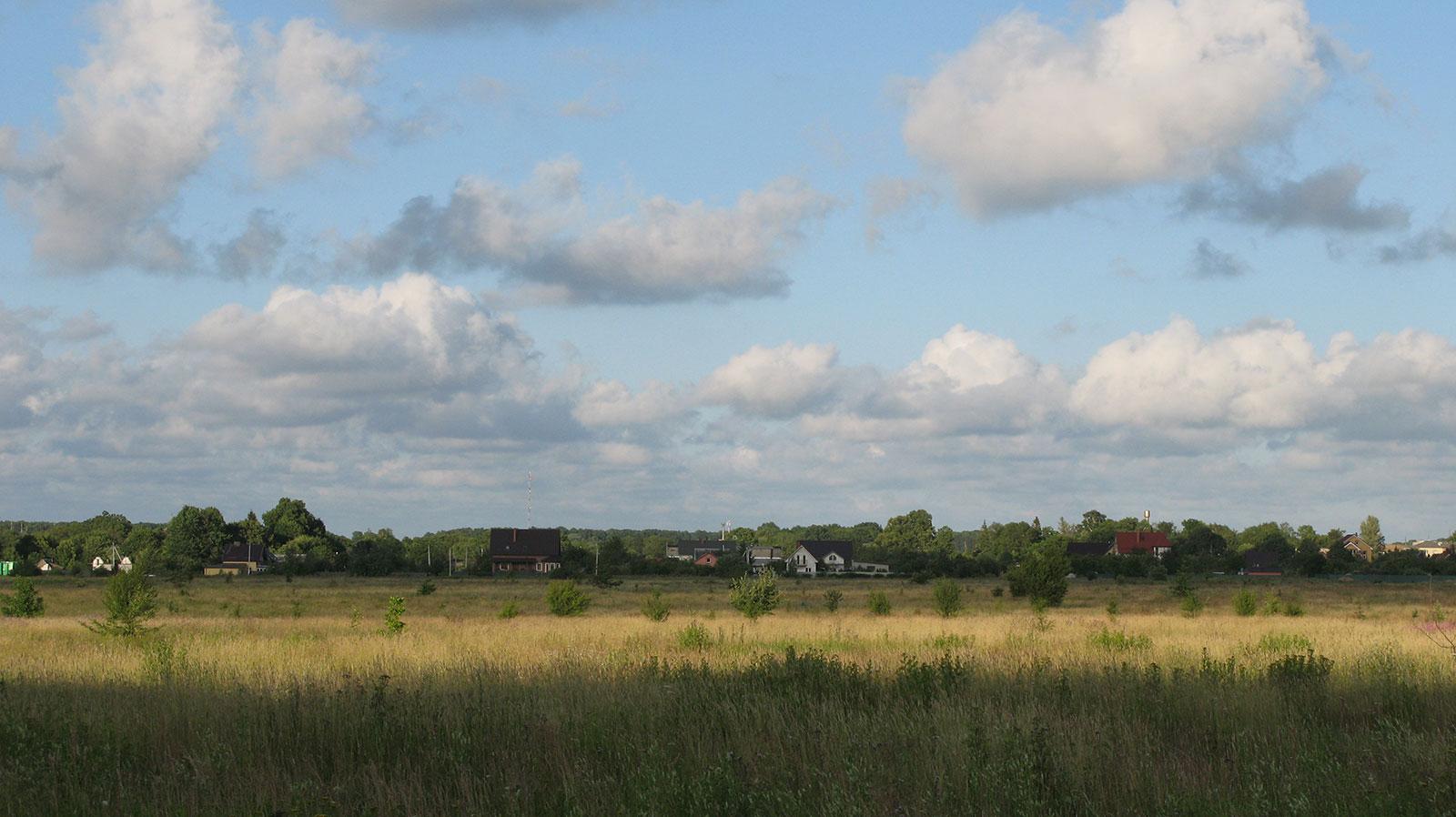 поле за городом