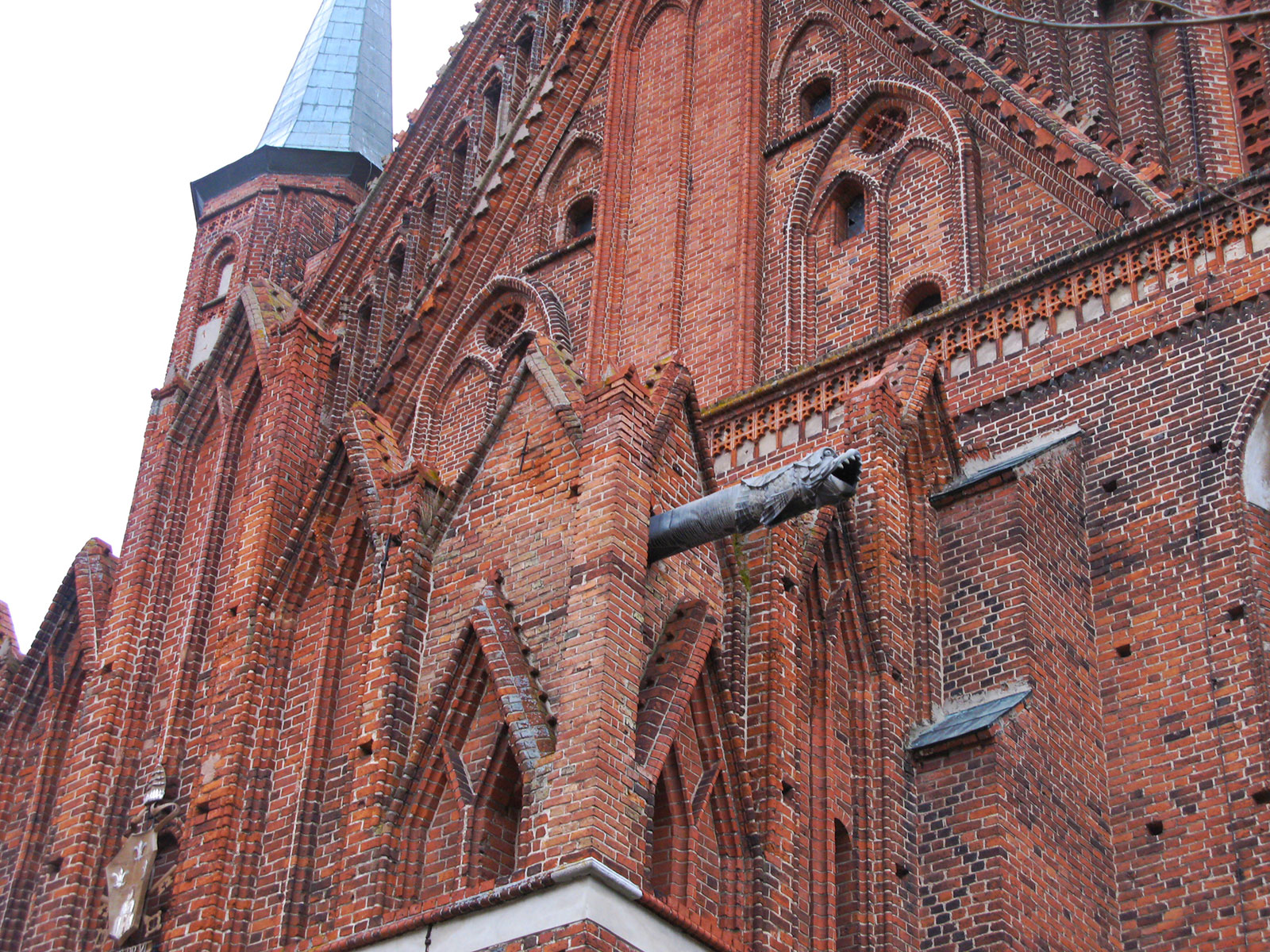 frombork-gotika
