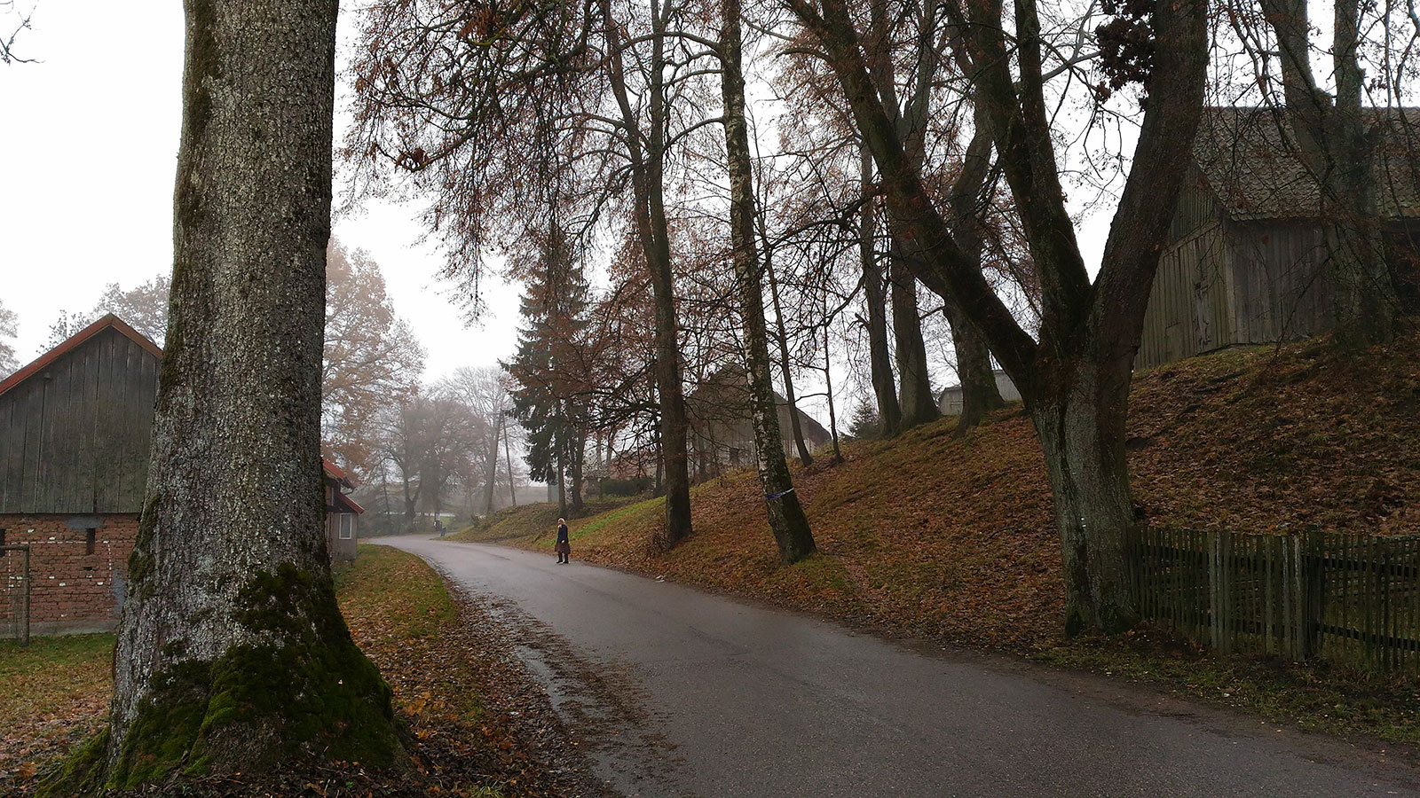 дорога в Польше