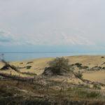 Легенды Куршской косы: Балтика, птицы и дюны