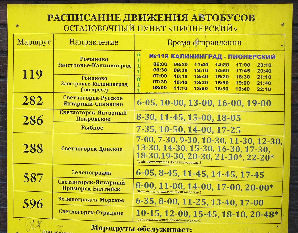 raspisanie-avtobusa-119-pionersk-kaliningrad-2021