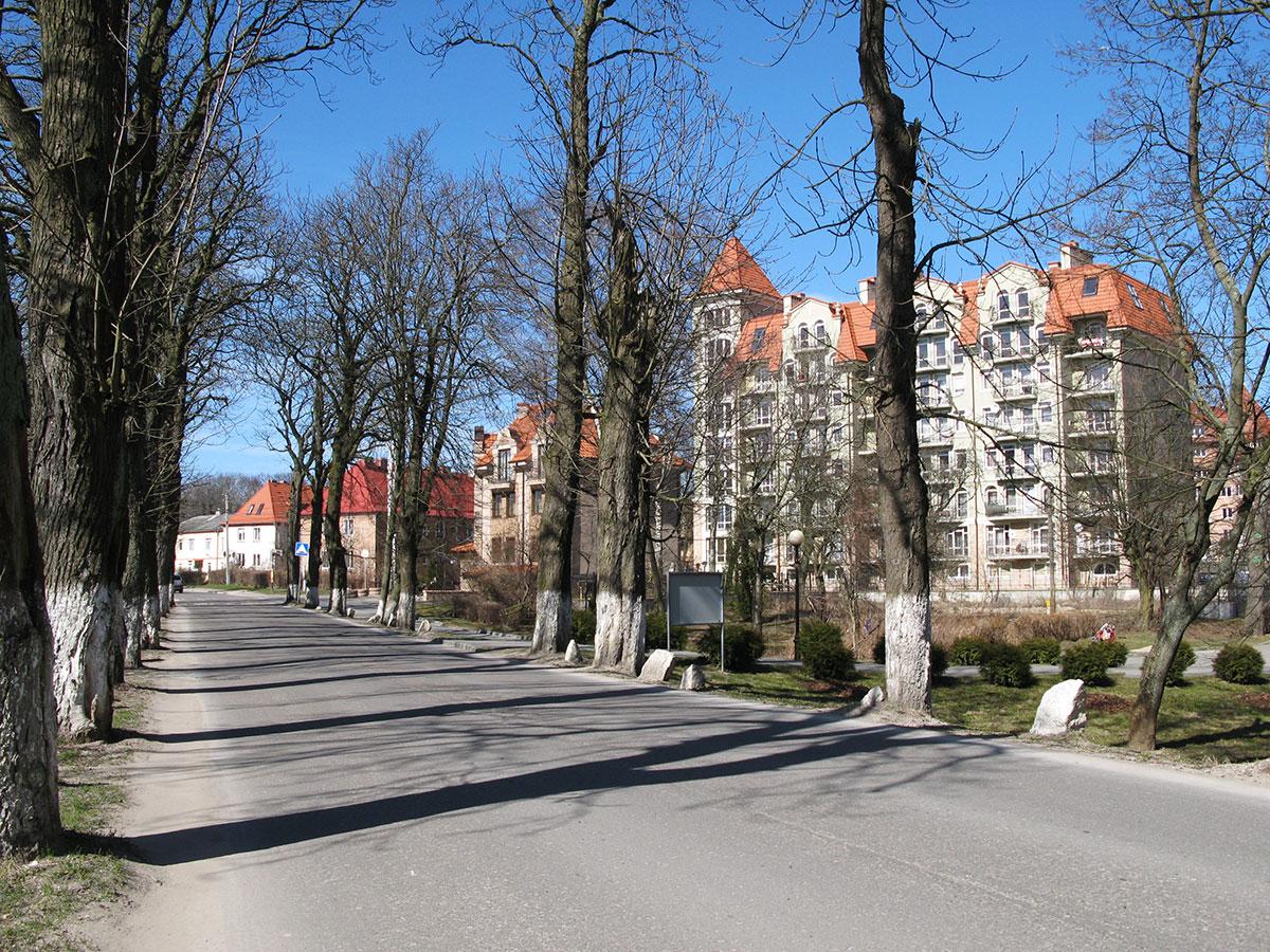 элитные дома в Пионерском