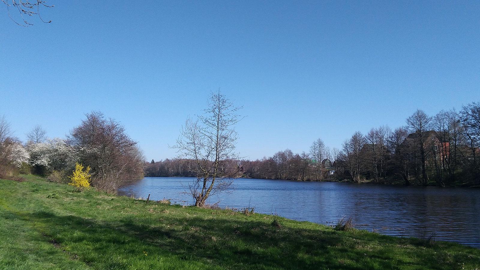 озеро в дачном поселке