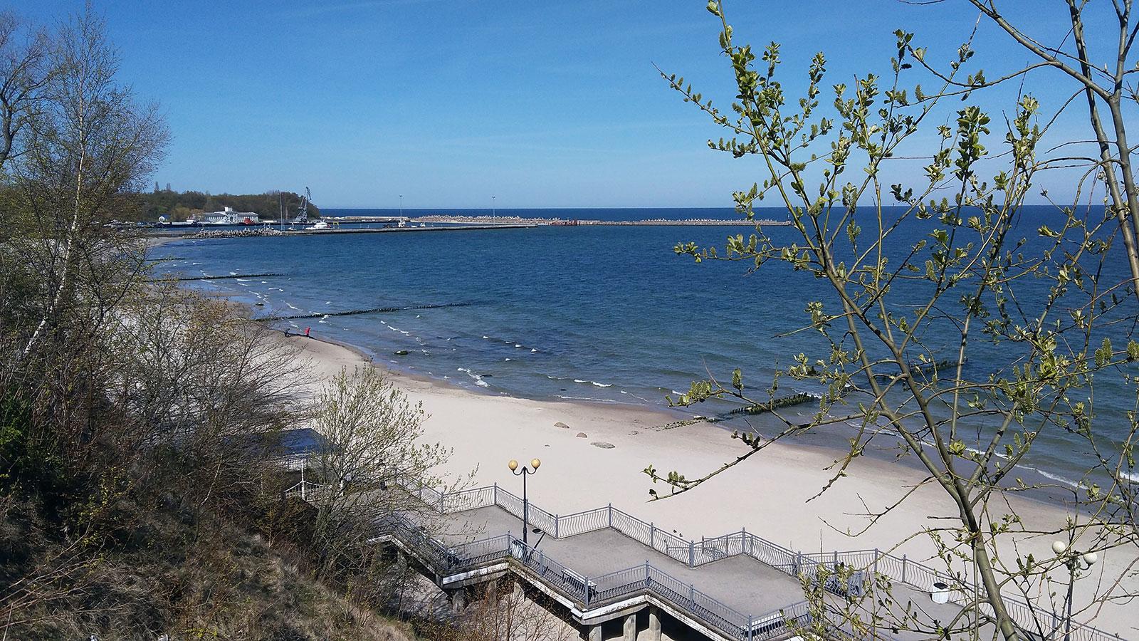 променад в пионерском балтийское море