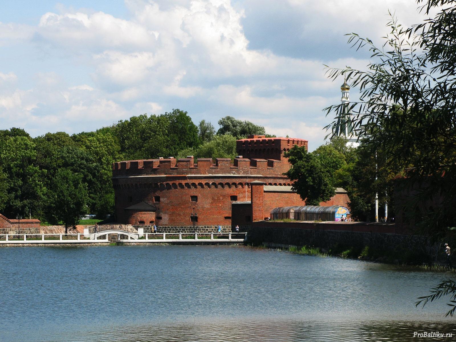 башня дона калининград