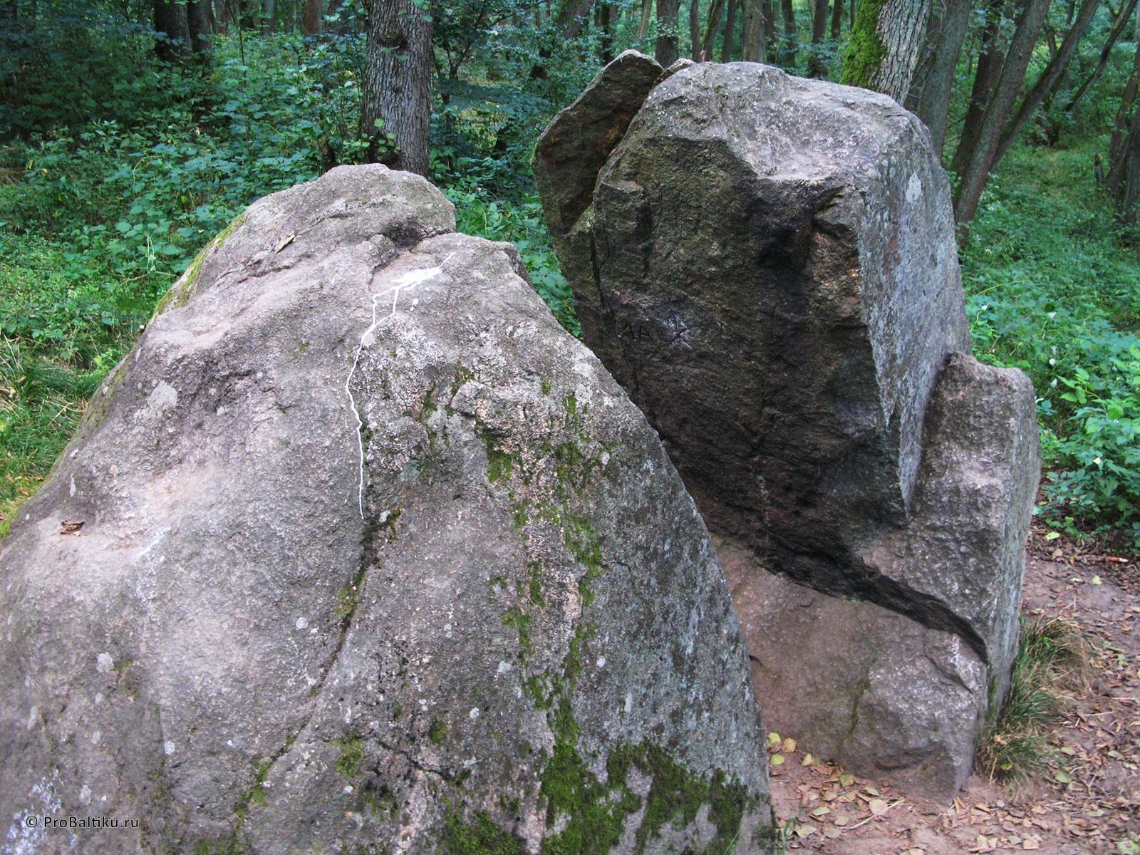 Borstenstein-kamen-lji-pionerskiy