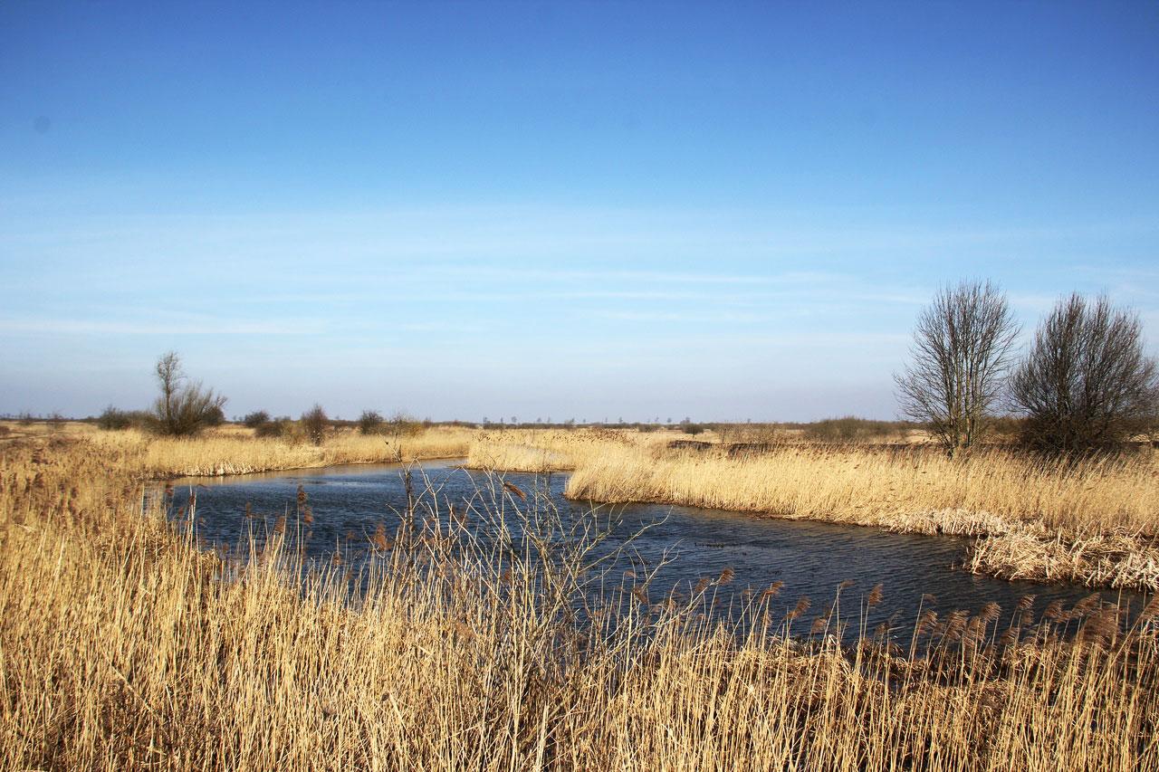 reka-nemoninka